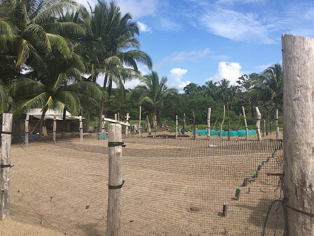 Tierschutz in Costa Rica