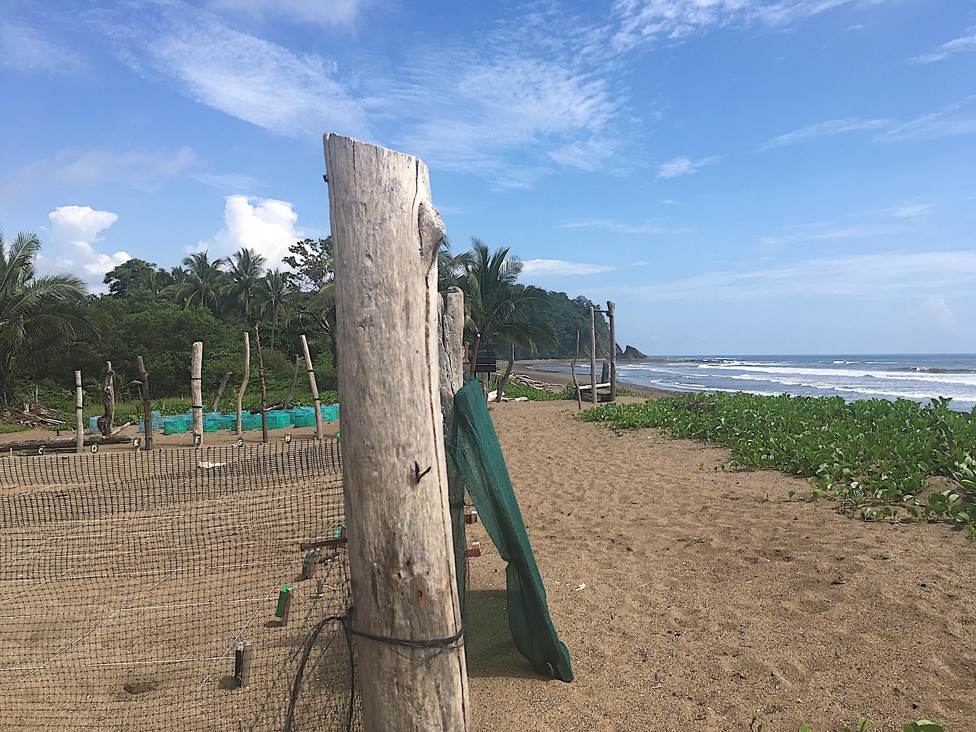 Naturschutz Costa Rica