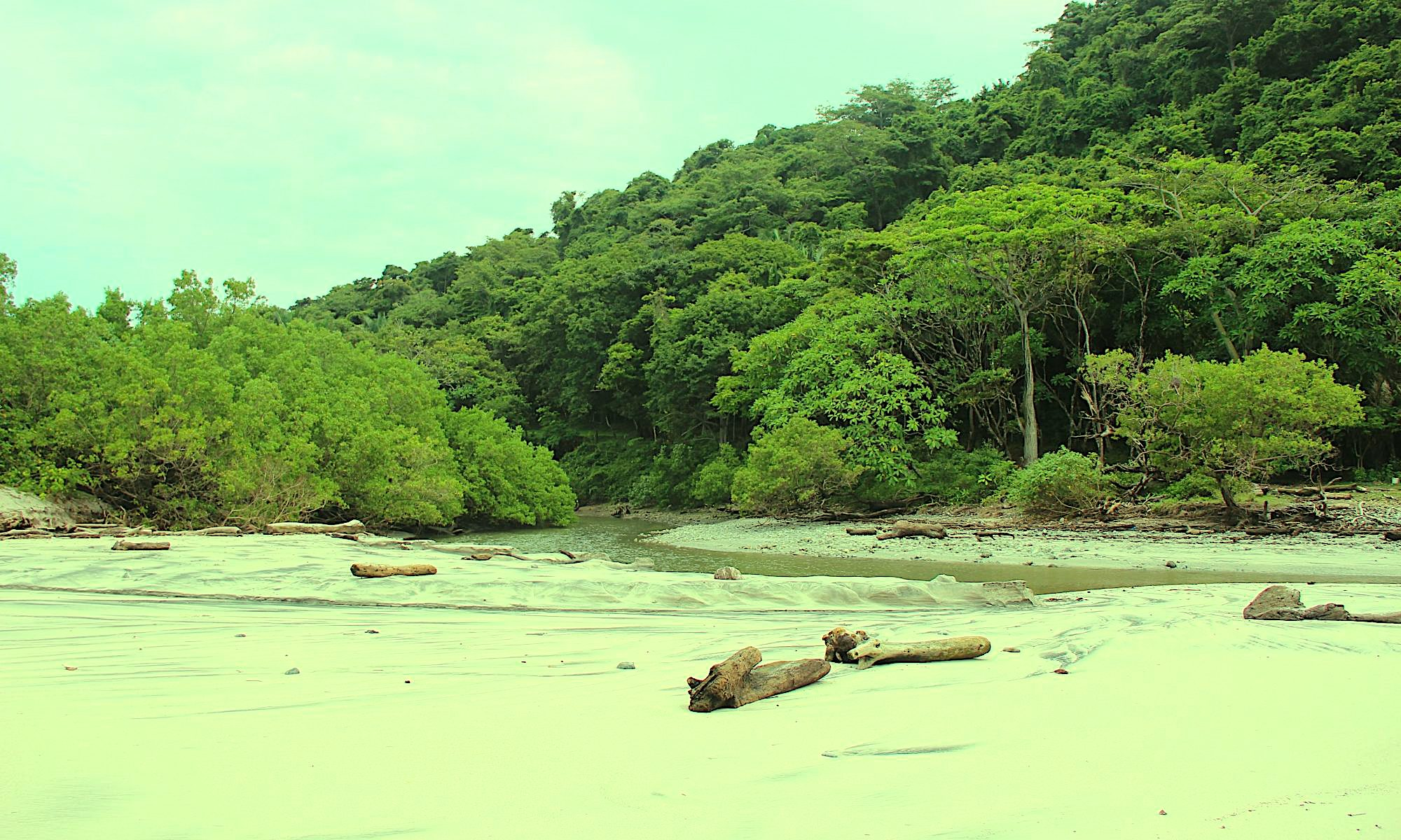 Playa an der Pazifiküste Costa Rica